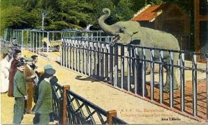 Barcelona  ATV nº16 colección zoológica del parque s/f Principios siglo XX Color ed. Ángel Toldrá Viazo Barcelona 17 €