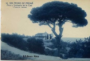 San Pedro de Premiá Pino y Santuario de la Cisa nº 16 ed. L Roisin fot. Barcelona s/f (años 20?) 15 €