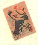sello31